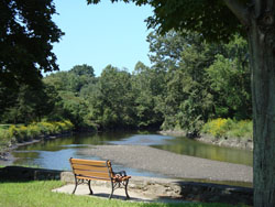 Green River Park Bench